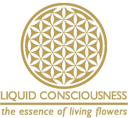 Liquid Consciouness Logo